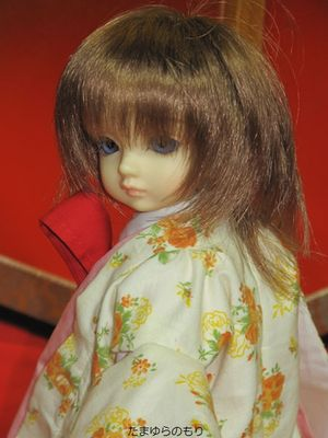 20110913_jitaku_037